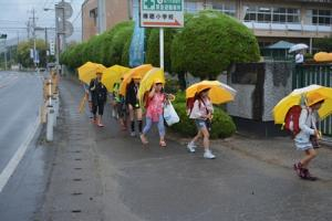 『H28雨の朝1』の画像