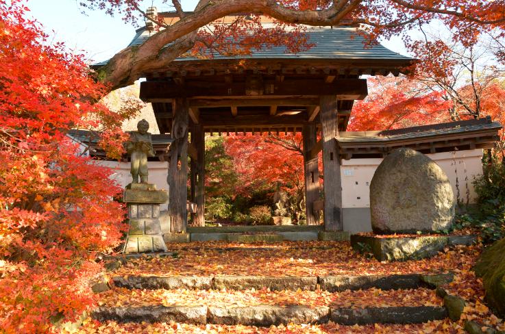 『曛静山薬王寺』の画像