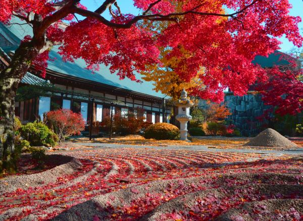 『月山寺 紅葉』の画像