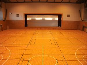 『岩瀬体育館メインアリーナ床』の画像