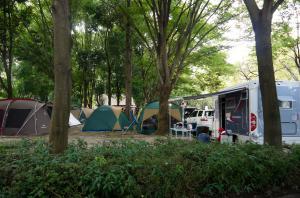 『上野沼やすらぎの里キャンプ場 オートキャンプ写真2』の画像