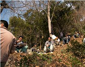 『桜の里づくり事業(3)』の画像