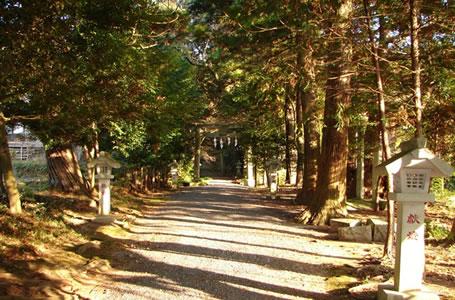 五所駒瀧神社画像その2