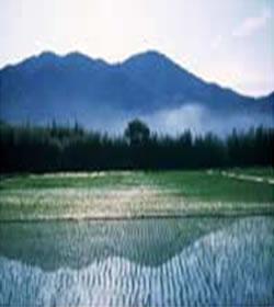 常陸三山画像その1
